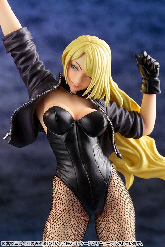 DC COMICS Bishoujo DC UNIVERSE Black Canary 2nd Edition 1/7 Complete Figure 6